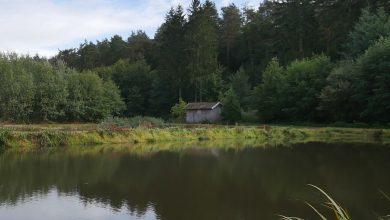 Photo of Veröffentlichung für den TeichKulturPark